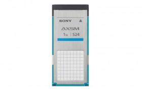 AXS-A1TS24 SONY