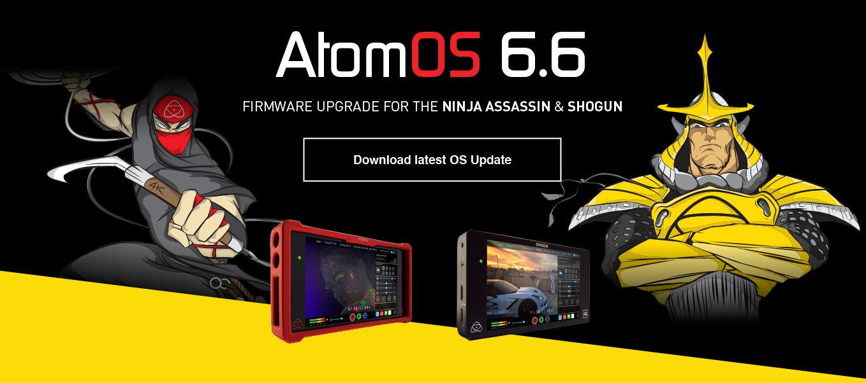ATOMOS 6.6