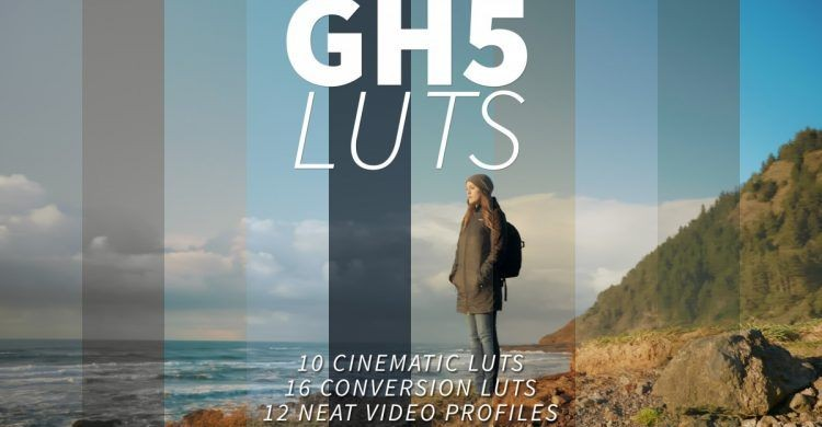 GH5 LUTS